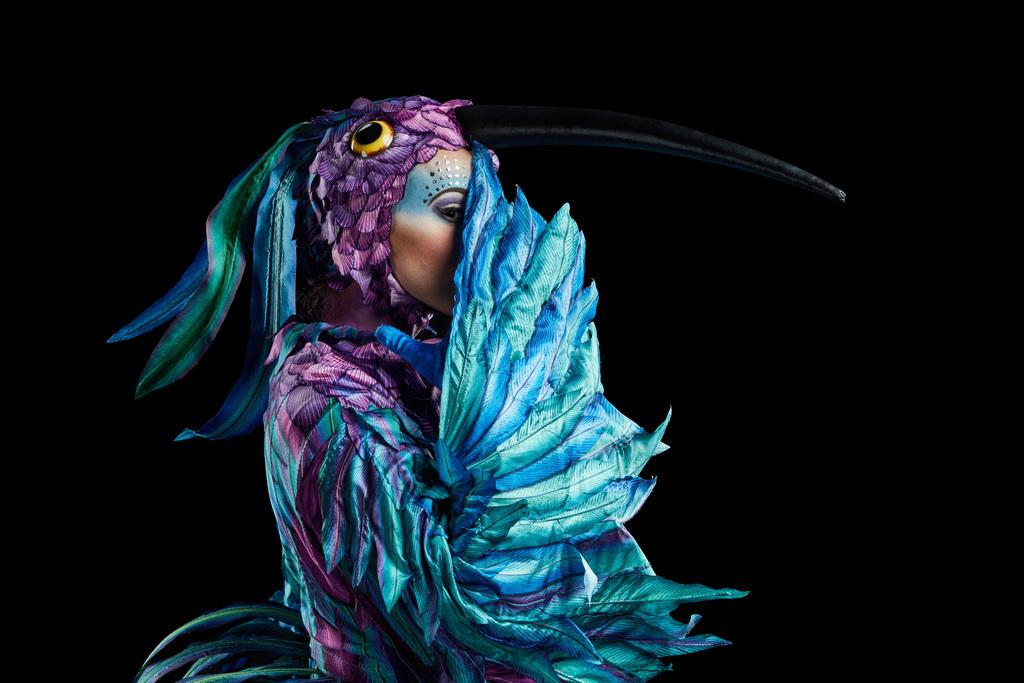 Cirque Du Soleil LUZIA en Chicago by Tu fashion petite alejandra avila